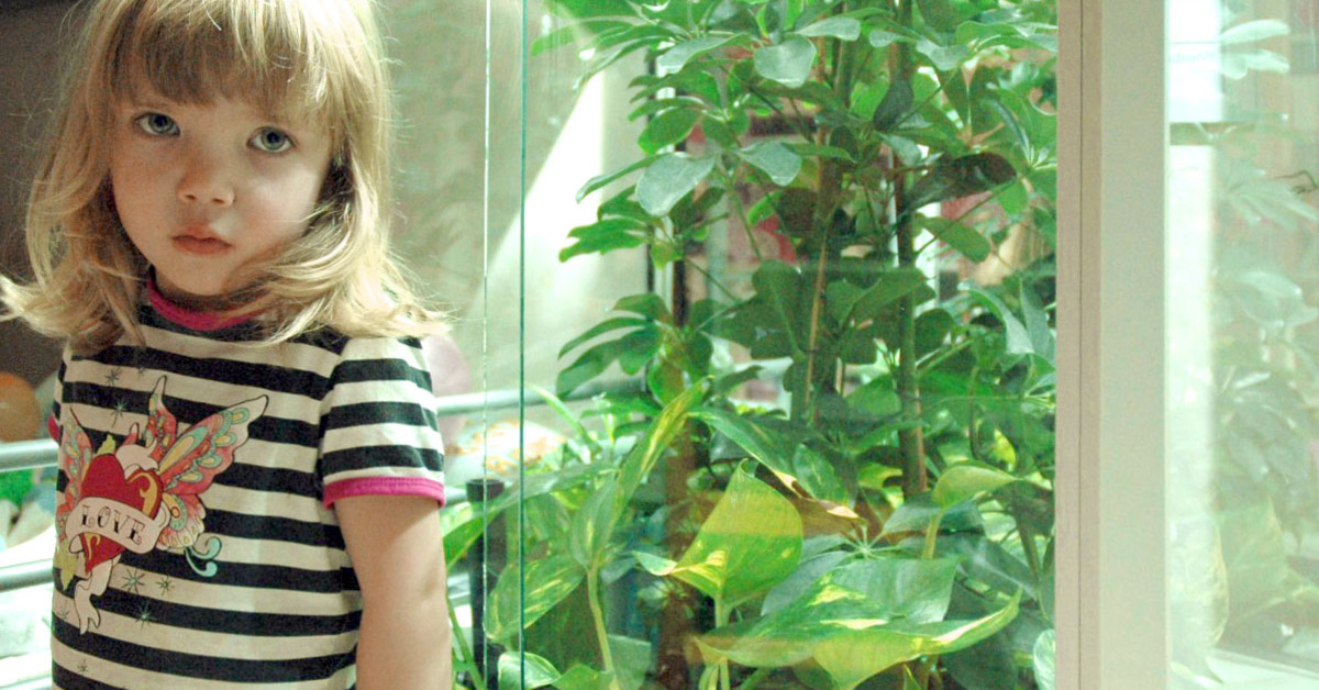 Denise 5 år fick livslusten tillbaka med hjälp av Levande Filter